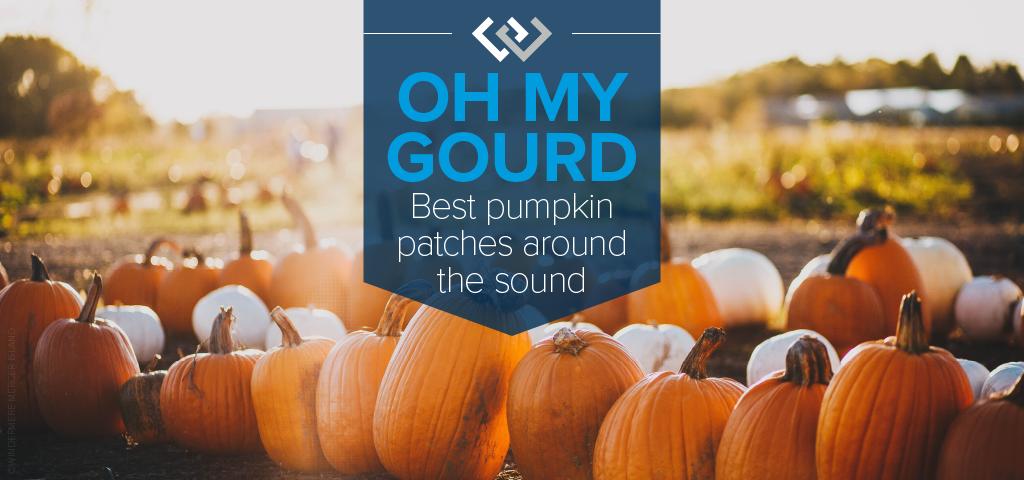 Oh My Gourd! Best Pumpkin Patches Around the Sound